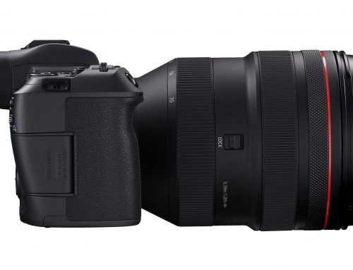 REVIEW: Canon R Camera with 28-70mm f2 Lens
